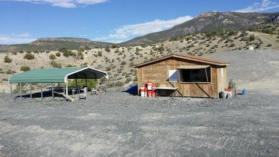 U-Dig Fossils : shack
