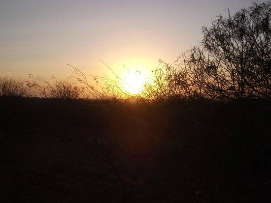 Tsavo Mashariki Camp : ALBA AL MASHARIKI
