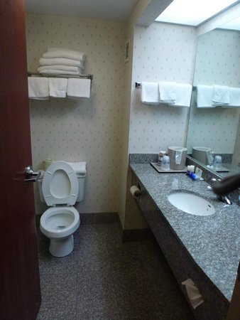 Best Western Plus Belle Meade Inn & Suites : Bathroom
