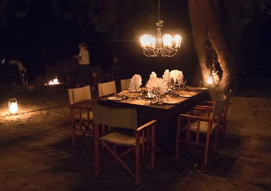 Great Plains Conservation Selinda Explorers Camp: Dinner under the stars