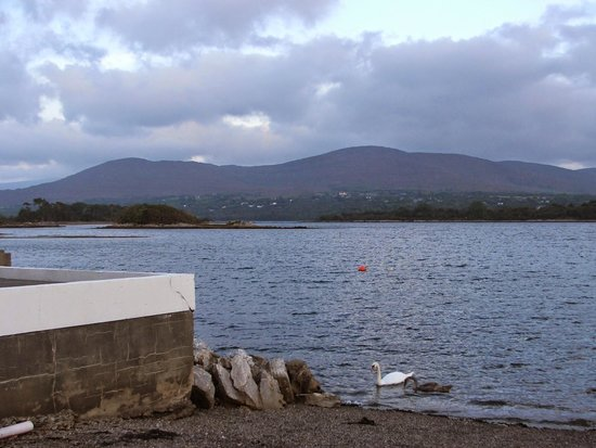 The Boathouse Bistro Dromquinna Manor: View from the bistro