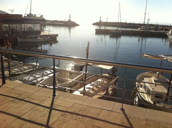 Hotel Sur: Early morning harbour view