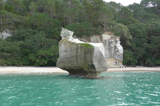 Hahei Explorer Cathedral Cove Boat Tour: Strange rock formation, sphynx like?