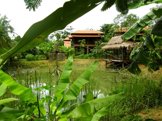 Maisons Wat Kor : Bungalow in front of the pond