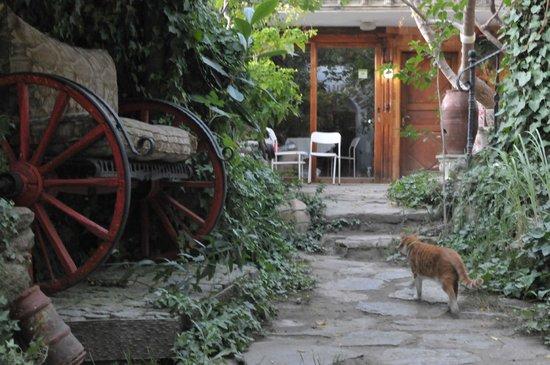 Hotel Sirince Evleri: patio