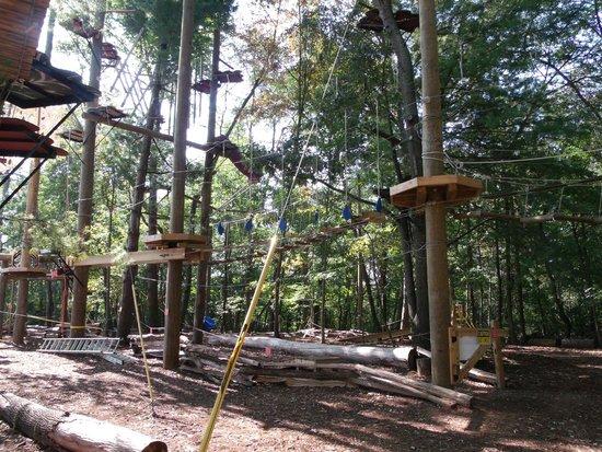 Asheville Zipline Canopy Adventures: Treetop Adventure Courses