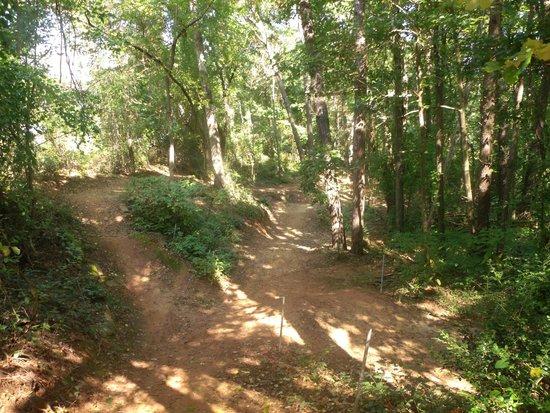 Asheville Zipline Canopy Adventures: Bike Trail