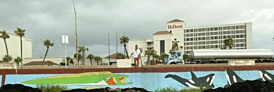 Hilton Galveston Island Resort: View from Beach facing Hotel