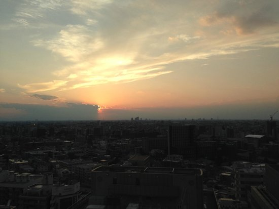 Hotel Metropolitan Tokyo Ikebukuro: View from the room