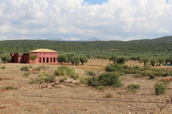 Eumelia Organic Agrotourism Farm & Guesthouse: Blick auf Eumelia und Umgebung