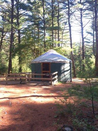 Myles Standish State Forest: Barrett's Pond Yurt A