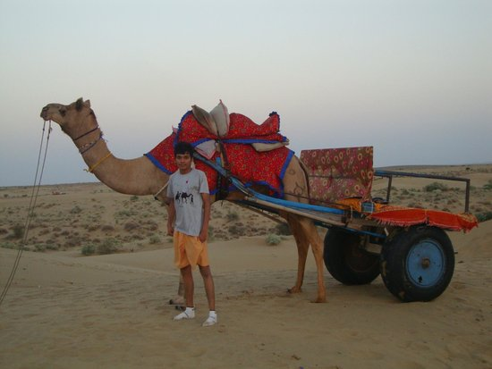 Malra Heritage Camp : Enjoyable camel ride