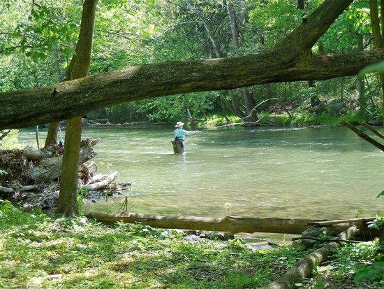 Spruce Creek, PA: Fishing on the Little Juniata