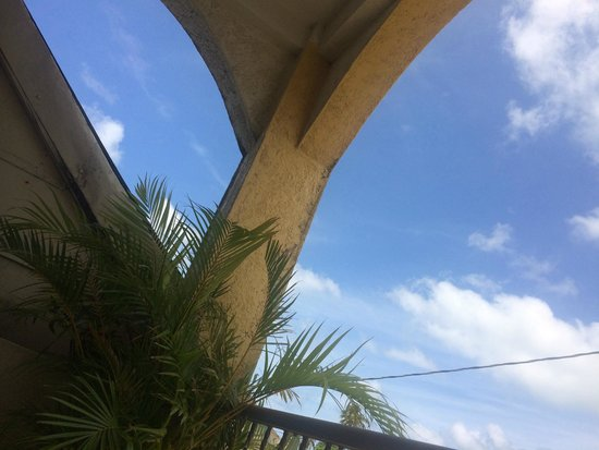 La Terraza Condominiums: The view from that oh-so-comfortable hammock!