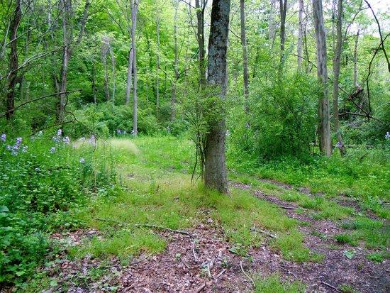 Spruce Creek, PA: Grounds