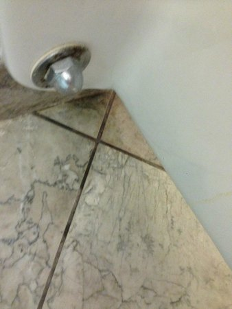 The Westin Crown Center : filth underneath toilet