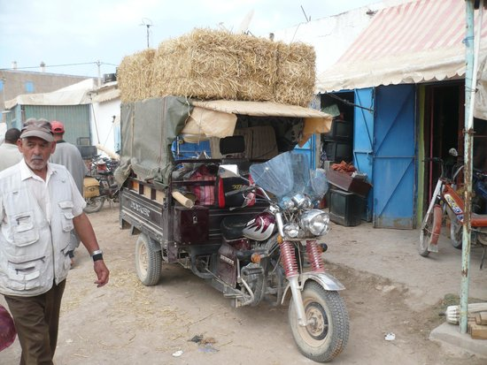 Dar Janoub Maison d'Hotes: le souk de Haa Draa