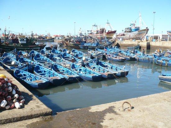 Dar Janoub Maison d'Hotes: le port d'Essaouira