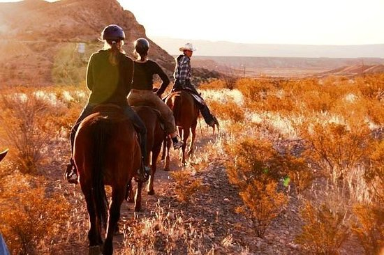 Lajitas & Big Bend Stables - Day Tours