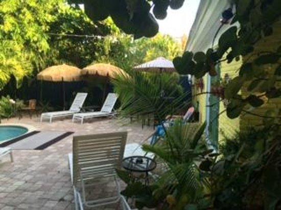 Calypso Inn: Pool area