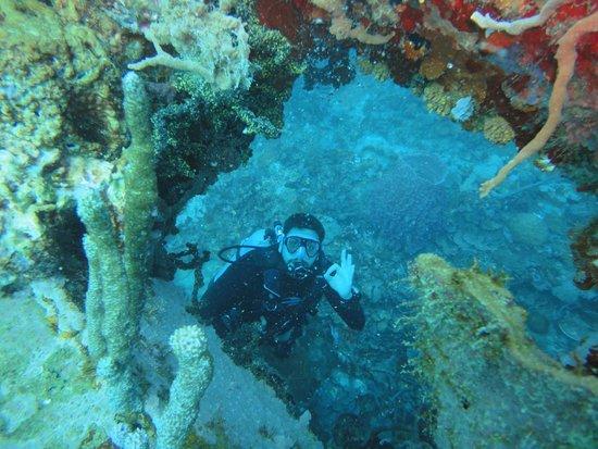 Naufr gio bild fr n diving planet cartagena tripadvisor for Dive planet