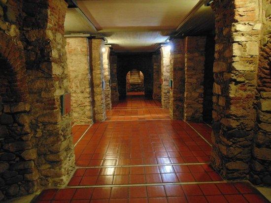 Cripta Jesuitica: Cripta