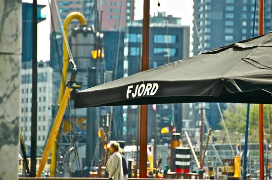 harbour view - picture of fjord eat & drink, rotterdam - tripadvisor