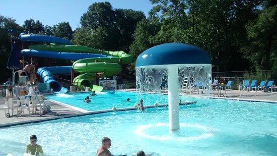 Yogi Bear's Jellystone Park Camp-Resort Hagerstown: pool