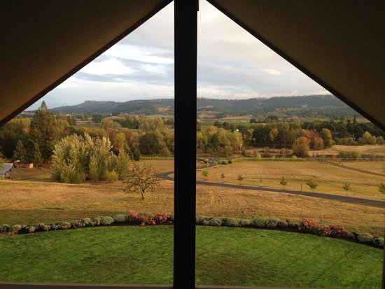 Le Puy A Wine Valley Inn: Our view from the room