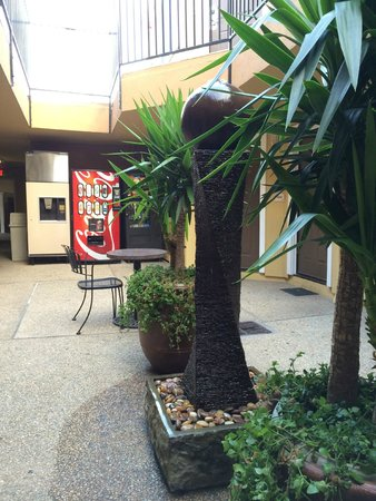Americas Best Value Inn & Suites - San Francisco Airport : Ground floor court yard