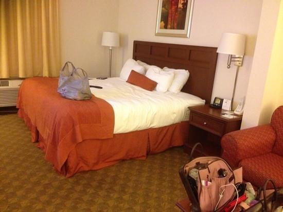 Wingate by Wyndham Tampa/At USF: our room