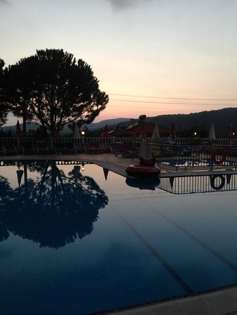 Leytur Hotel: View of the pool