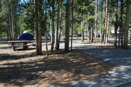 Madison Campground: Loop A (RVs and Tents)