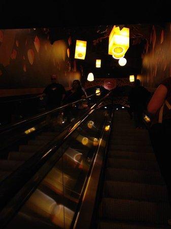 Disney Store: Tangled-themed escalators