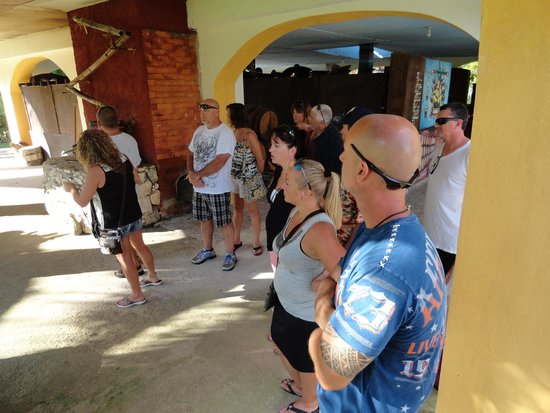Free Tequila Tour By Casa Mission: Fun Times