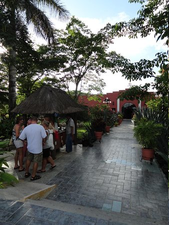 Free Tequila Tour By Casa Mission: Beatiful Place