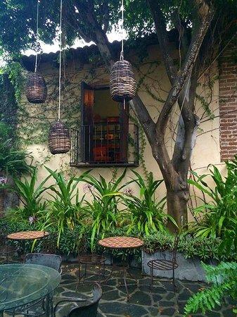 Todos Santos Inn : Lovely