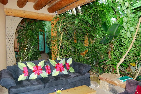 Earthship Biotecture Rainforest In The Living Room