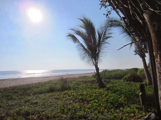 Casa Delfin Sonriente : Beach