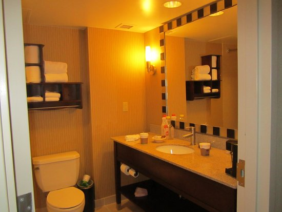 Hampton Inn Washington, DC - Convention Center: the bathroon