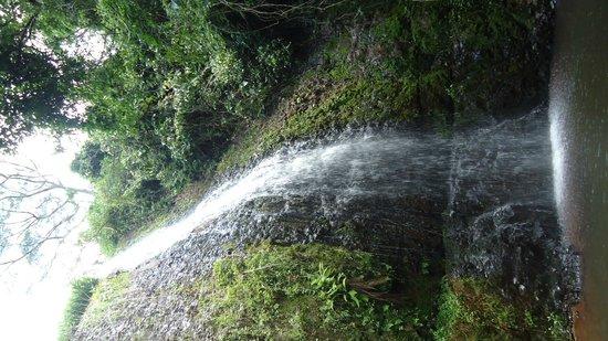 Bela Vista Waterfall: Bela Vista