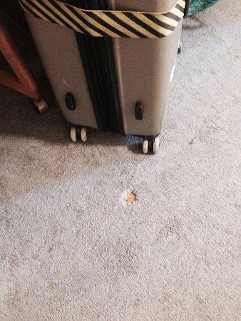 Riverside Inn: Hole on the carpet