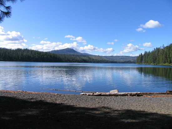The Lodge at Suttle Lake : View of Suttle Lake from Day Use area