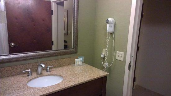 Hampton Inn & Suites Boynton Beach: Classy bath.