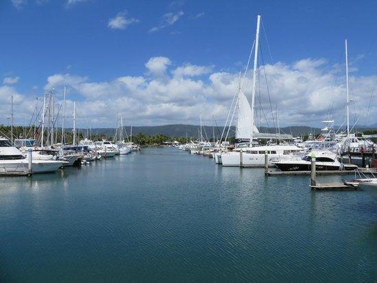 Great Sailing Essentials - Say No More: Port Douglas Marina