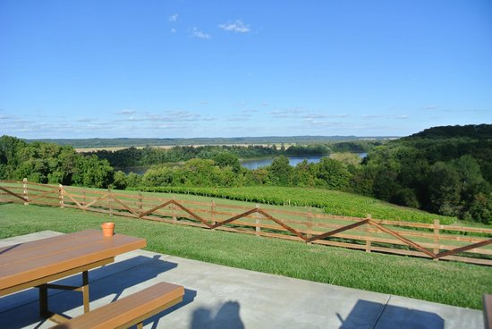 Oak Glenn Vineyard and Winery: picnic table area
