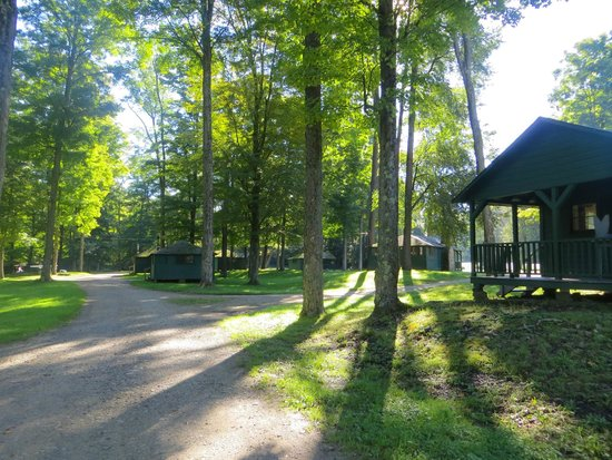 Allegany State Park: Buffalo Cabin Trail
