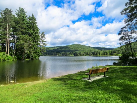 Allegany State Park: Area around Red House Lake
