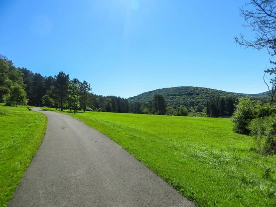 Allegany State Park: Part of the bike path around Red House Lake