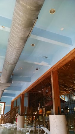 Grizzly Jack's Grand Bear Resort: Mold growing on drywall by pool